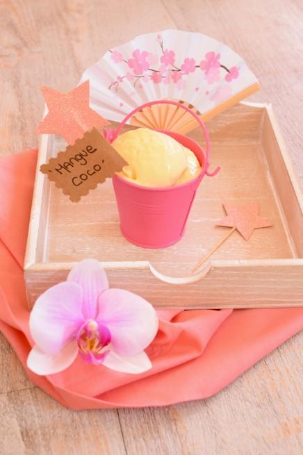frozen-yogourt-mangue-coco1