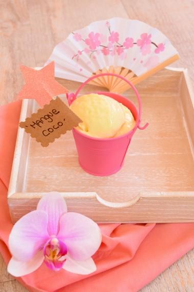 yaourt-glacé-mangue2