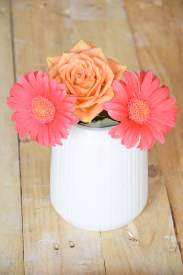 fleur-germini-rose