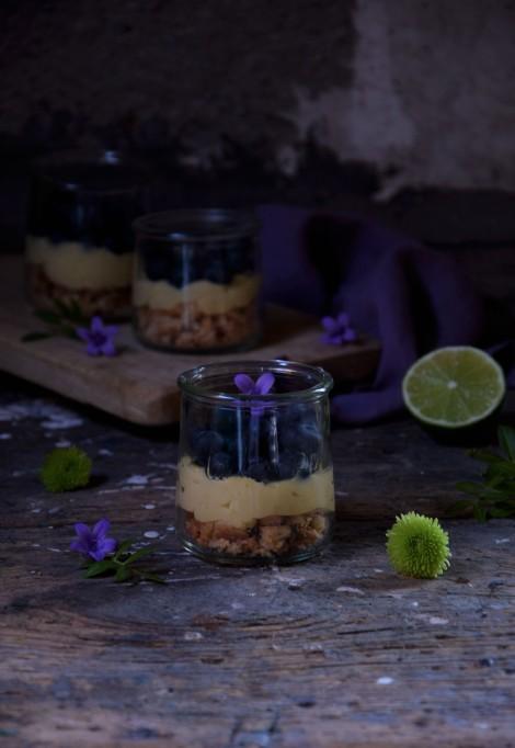 tarte-myrtile-sanslactose